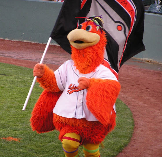 Sherman, the Shorebirds mascot- Salisbury, Md